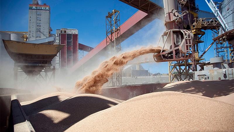 La soja imparable: llegó a cotizar US$ 613 la tonelada por bajos stocks en EE.UU