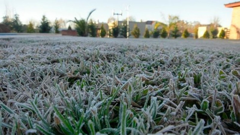 Anuncian llegada de aire polar: prevén fuertes heladas y temperaturas bajo cero