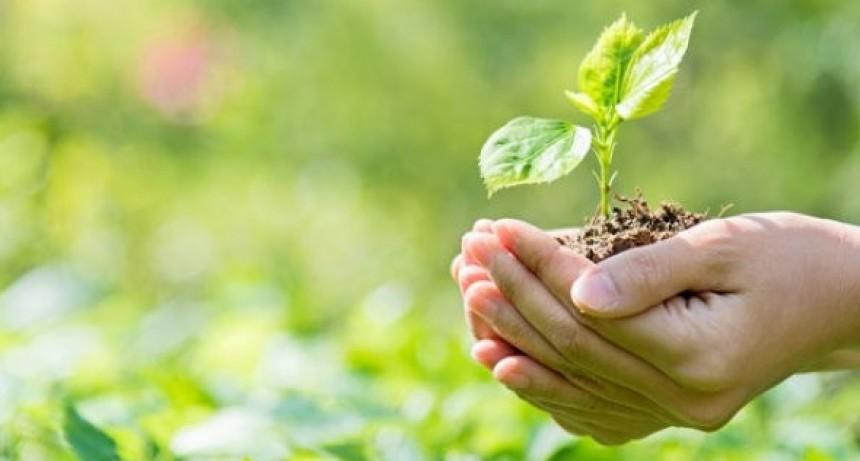 Es ley la Educación Ambiental Integral