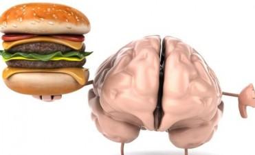 ¿Puede la comida chatarra causar daño cerebral?