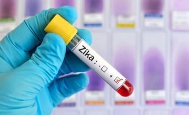 Panorama: una nueva esperanza para encontrar una vacuna conjunta contra el zika y el dengue