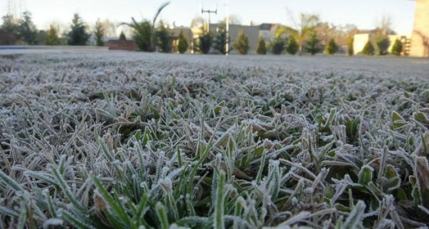 Entre Ríos, helada: un grado bajo cero de temperatura