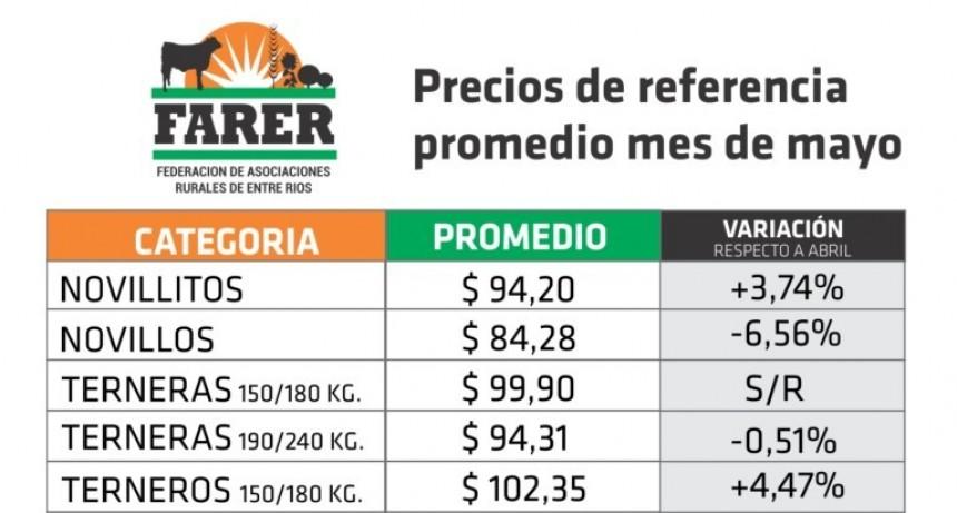 FARER informó los precios promedio de la hacienda surgidos en los remates de mayo
