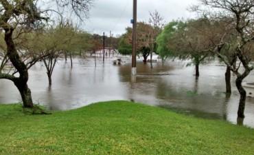 Imágenes de lo que dejó la intensa lluvia del sábado