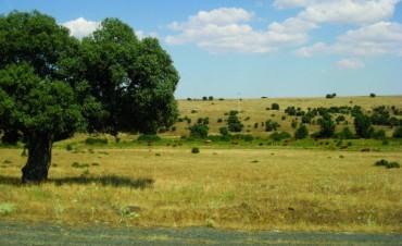 Rechazan decreto de Macri que facilita venta de tierras a extranjeros