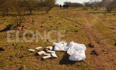 Avioneta arrojó en un campo bultos con panes de marihuana