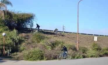Limpieza de terraplenes en la Ruta Nacional N 127