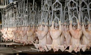 Entre Ríos reclamará a la Nación por la situación del sector avícola