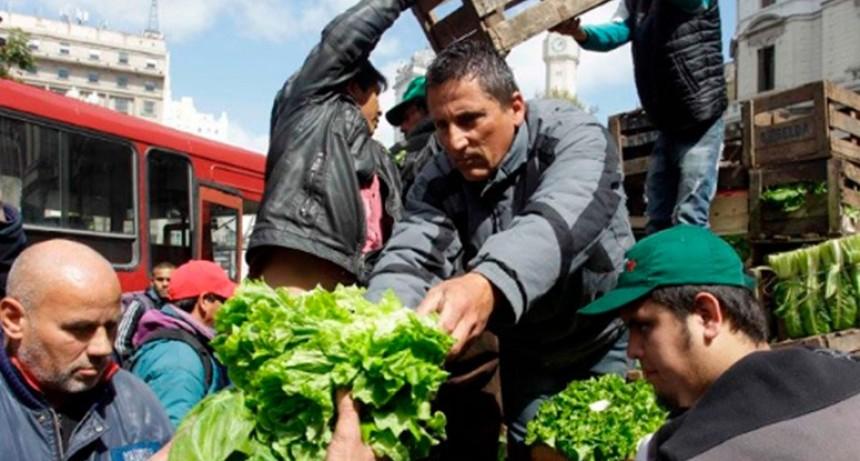 Crisis en el sector: Pequeños productores regalarán 10.000 kilos de verdura
