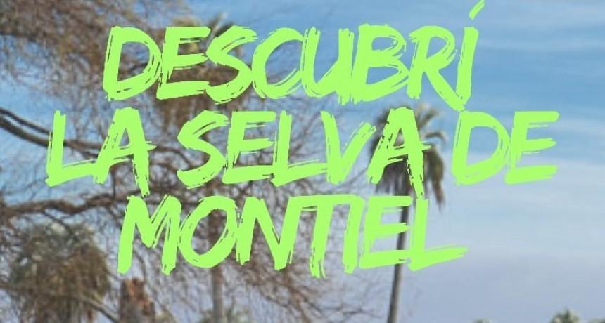 """ESTE SÁBADO SE REALIZA LA EXCURSIÓN """"DESCUBRÍ LA SELVA DE MONTIEL"""""""
