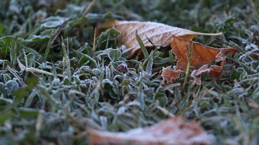El día más frío en lo que va del año: Entre Ríos bajo cero