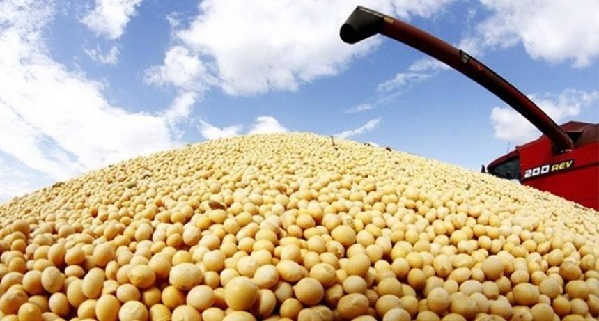 La siembra de soja en Entre Ríos es la más baja de los últimos 16 años
