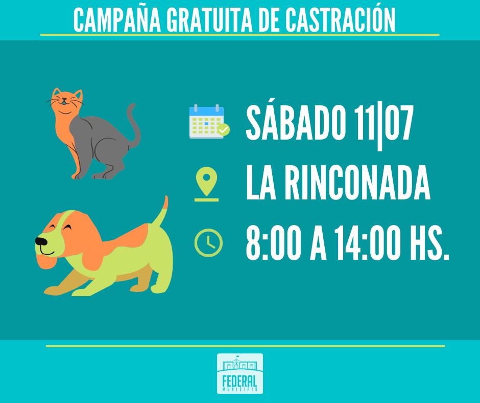 Campaña Municipal de Castración en La Rinconada