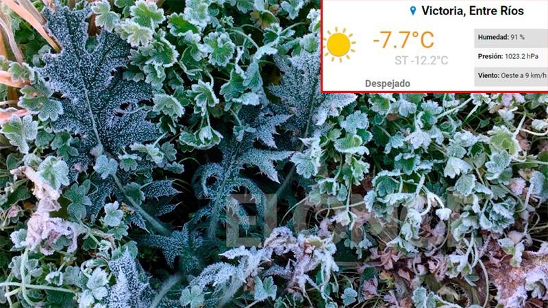 Amanecer helado: 12 grados bajo cero de sensación térmica en zonas de Entre Ríos
