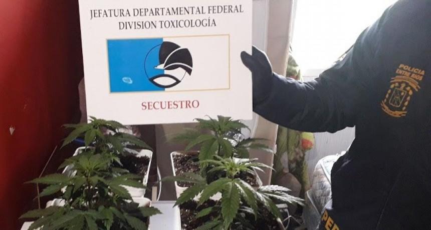 Personal de la División Toxicología  y Guardia Especial, participaron en Allanamientos realizados en Federación