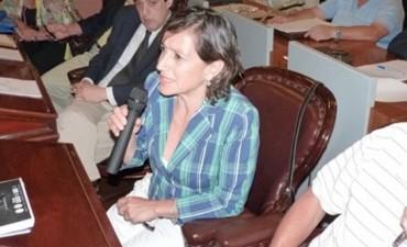 Diputada quiere saber qué pasó con los $20 millones para Ayuí