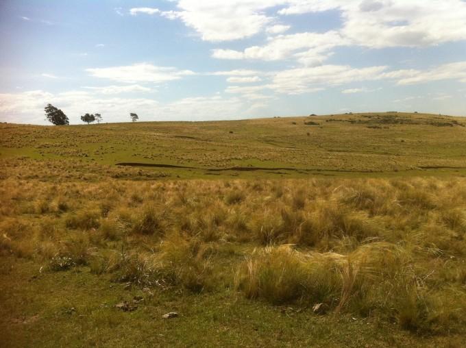 La Federación Agraria Argentina en alerta por dictamen  de la Justicia en Federal para desalojar productora rural