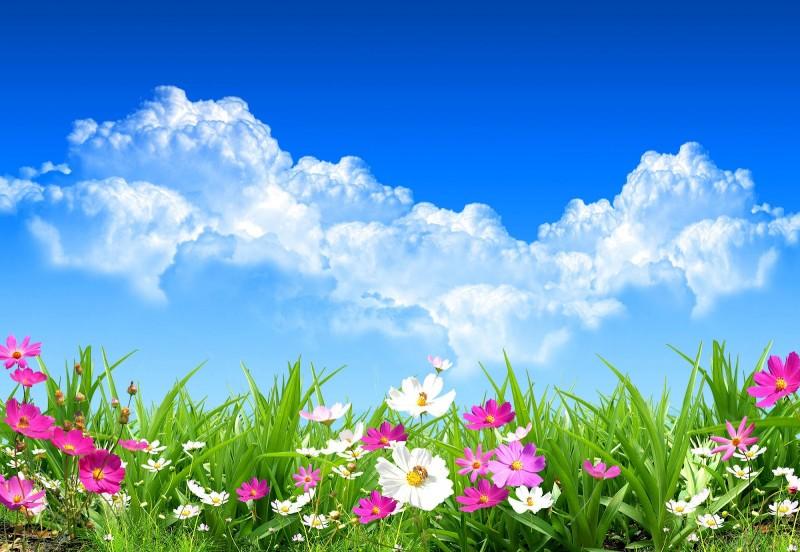 Pronostican un fin de semana primaveral: Sol y temperaturas muy agradables
