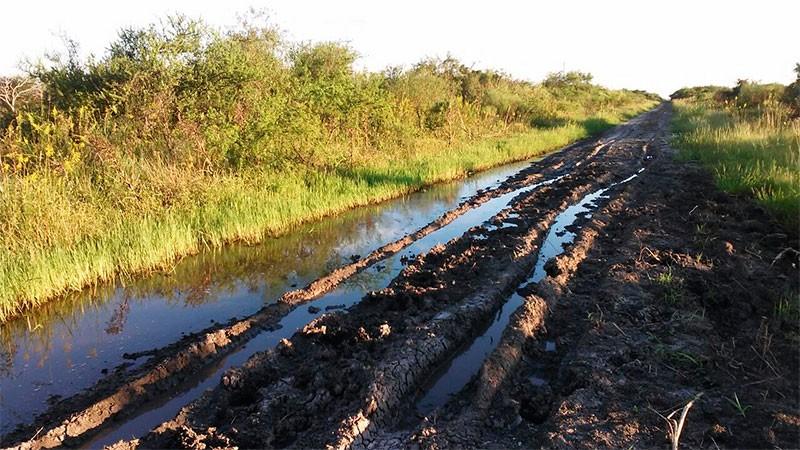En Argentina, sólo el 12% de los caminos rurales están asfaltados