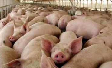 Capper expresó preocupación por la importación de carne de cerdo de Estados Unidos