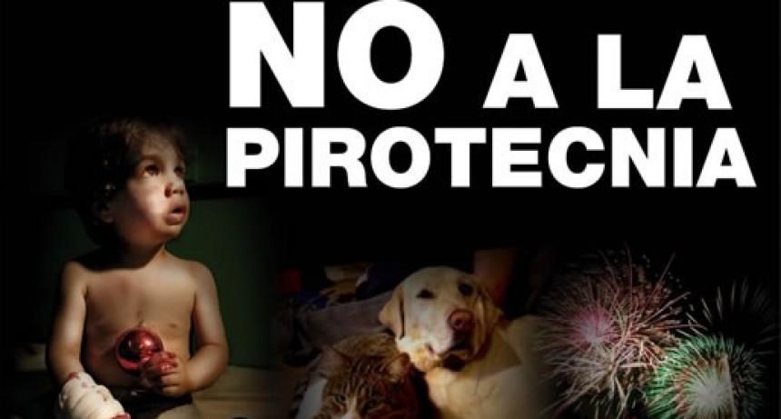 En estudio la prohibición del uso de pirotecnia en Federal