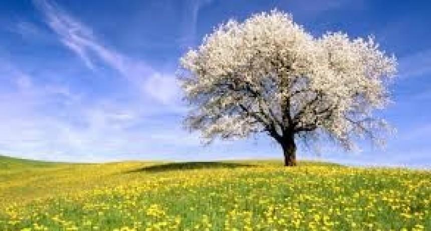Habrá dos días primaverales y después llegaría la lluvia