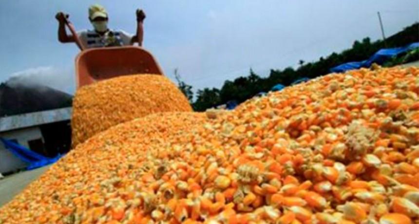 Argentina ya no está entre los principales exportadores de productos agrícolas