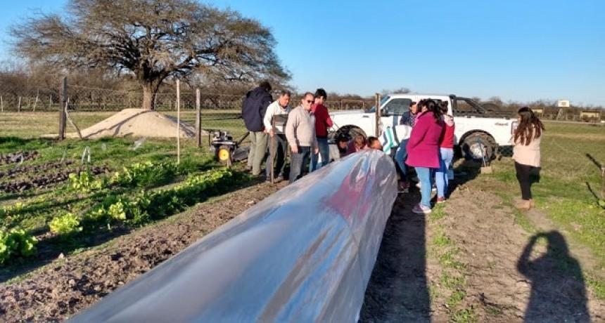 Capacitación sobre microtuneles para productores horticolas