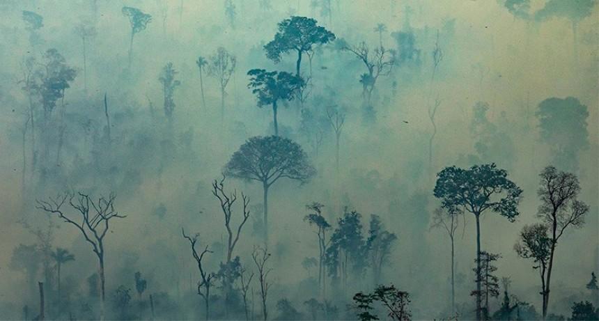 Incendios en el Amazonas: El humo ya afecta a Entre Ríos y otras 16 provincias