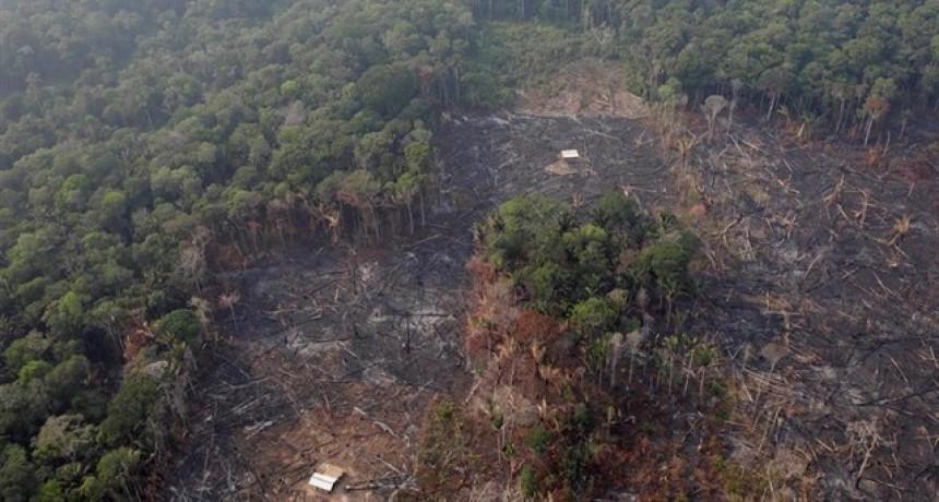 Cómo salvar la Amazonia sin ser condescendientes con Brasil