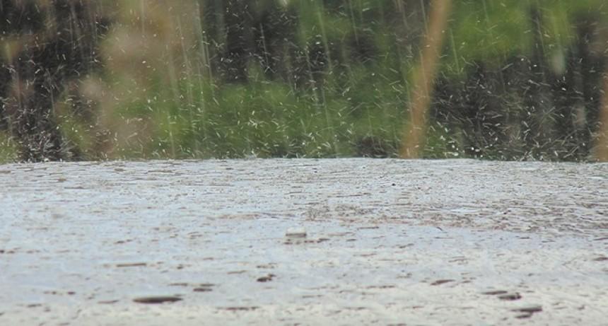 Hay alerta por tormentas intensas para una zona de Entre Ríos