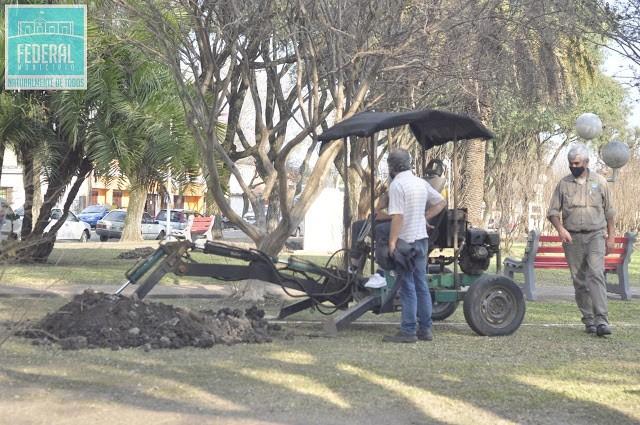 Avanzan los trabajos para las nuevas luminarias en Plaza Urquiza
