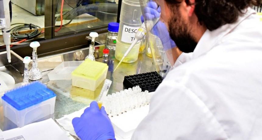 Suero equino: Laboratorio entrerriano es el único elegido para medir muestras
