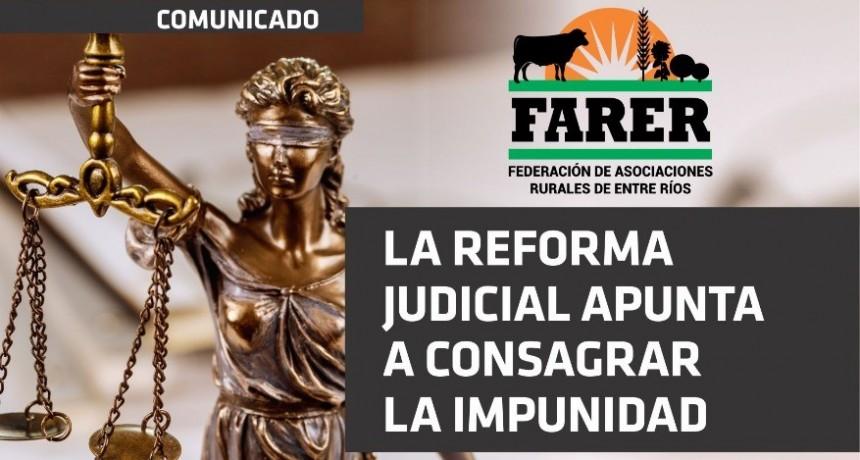 Farer sienta posición respecto de la reforma judicial