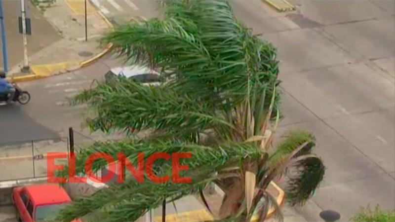 Alerta amarilla por vientos fuertes en Entre Ríos: Ráfagas alcanzarían 70km/h