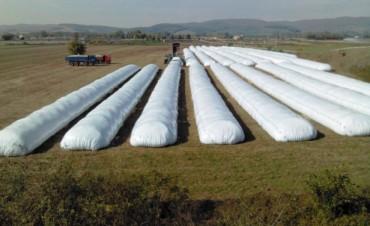 El Silo Bolsa un sistema de almacenamiento de granos que se exporta al mundo