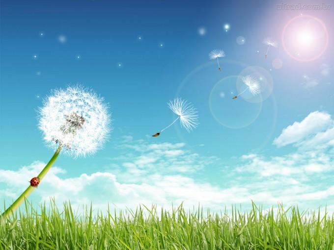 Pronostican un fin de semana primaveral: Sol y casi 30 grados