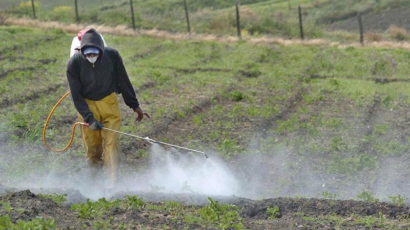Entre Ríos trabaja para mitigar el impacto de la contaminación ambiental