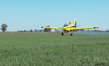 Buscan penalizar las fumigaciones aéreas y terrestres próximas a una población