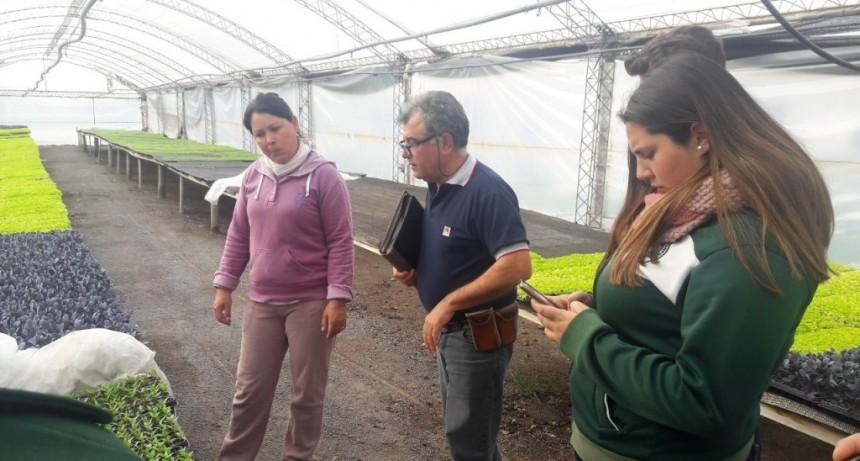 VIAJE DEL MUNICIPIO, INTA, AGROTÉCNICA Y PRODUCTORES DEL GRUPO DE ABASTECIMIENTO LOCAL A MONTE VERA