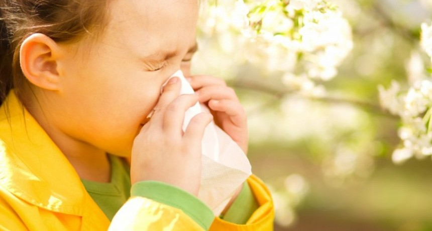 Alergias y asma: ¿por qué empeoran en primavera?