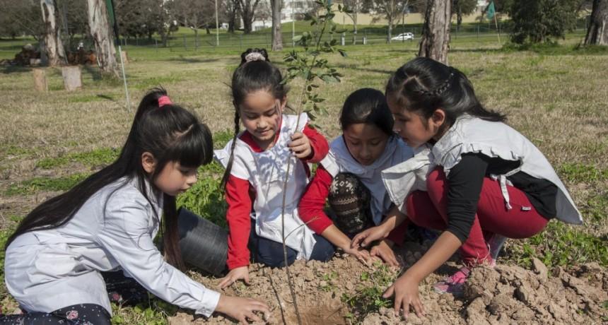 Alumnos y docentes proponen plantar un árbol por cada nacimiento en Federal
