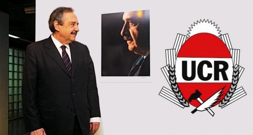 Dolido con la UCR, Alfonsín se reunirá con Alberto Fernández