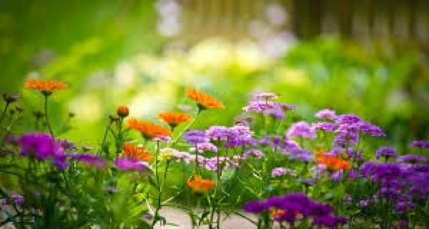 Qué día y hora comienza la primavera este año