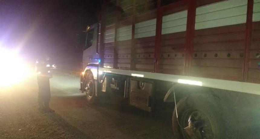 Operativos policiales para prevenir ilícitos y accidentes de transito