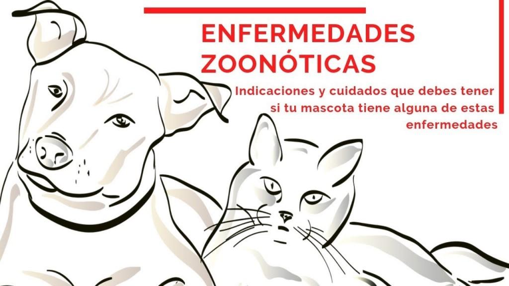 Diputadas y diputados abordaron el proyecto de prevención de enfermedades zoonóticas