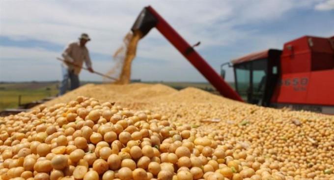 Alertan que Argentina cayó en el ranking de exportadores de alimentos