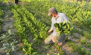 El Municipio convoca a Horticultores de la zona para coordinar las tareas de la próxima temporada
