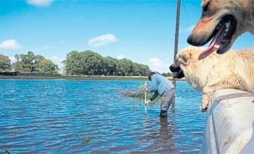 La lluvia frena la siembra de soja en importantes zonas del país