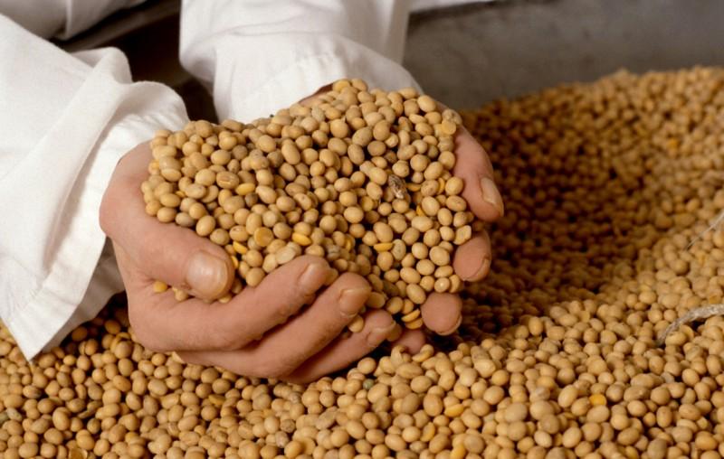 Rebaja de retenciones a la soja: Se recaudarán US$ 1.000 millones menos